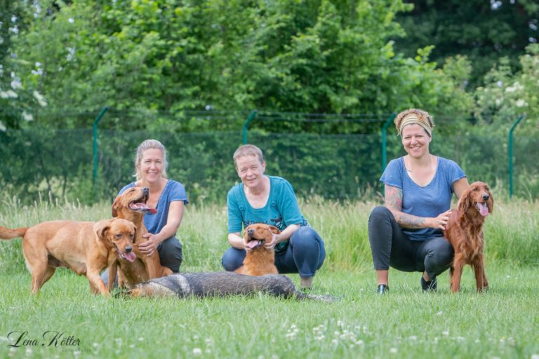 Hundetraining Fifficats - Raum Versmold Bad Laer