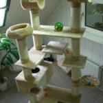 Katzenpension Fifficats Kletterbaum